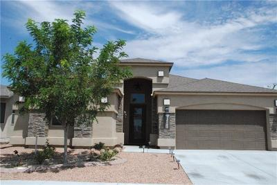 El Paso Single Family Home For Sale: 14725 Sunny Land