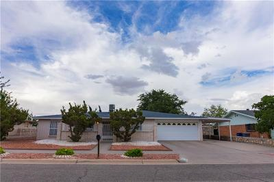 El Paso Single Family Home For Sale: 10625 Islerock Drive
