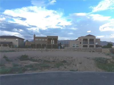 El Paso Single Family Home For Sale: 4016 Hacienda Roja