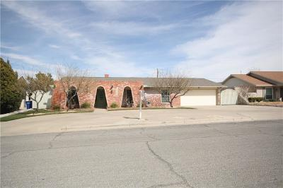 El Paso Single Family Home For Sale: 9125 W H Burges Drive