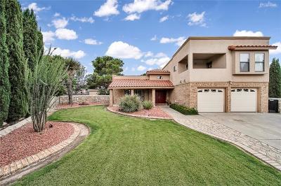 El Paso Single Family Home For Sale: 11500 Bobby Fuller Drive