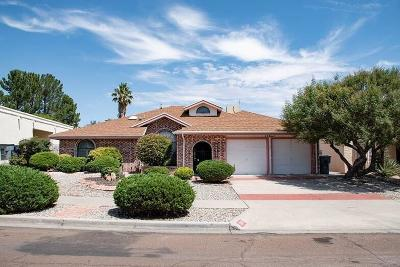 El Paso Single Family Home For Sale: 11621 Lake Erie Drive