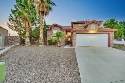 Single Family Home For Sale: 1905 Pueblo Azul Lane