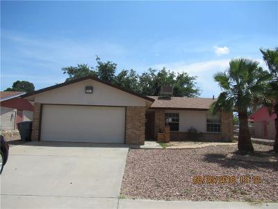 El Paso Single Family Home For Sale: 11176 Tahoka Avenue