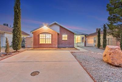 Socorro Single Family Home For Sale: 10437 Valle Del Mar Drive