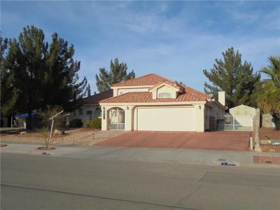 Horizon City Single Family Home For Sale: 18990 Armington Drive