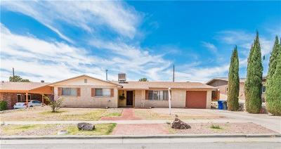 El Paso Single Family Home For Sale: 229 Nimbus Road