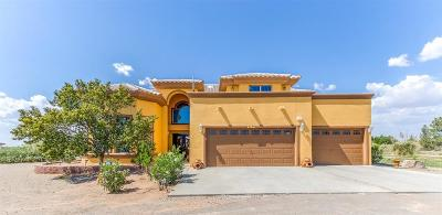 Single Family Home For Sale: 5125 Desert Willow Drive