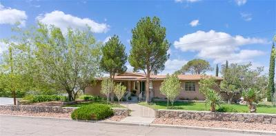 El Paso Single Family Home For Sale: 1231 Stockwell Lane