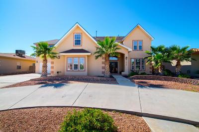 El Paso Single Family Home For Sale: 11416 Sundance Avenue