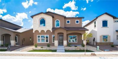 El Paso Single Family Home For Sale: 1933 William Caples Street