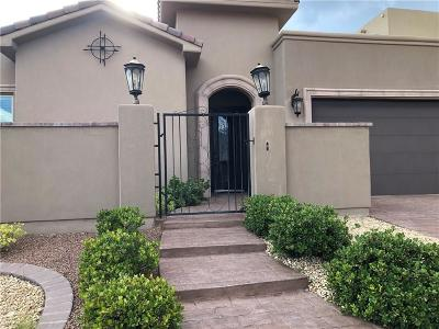 El Paso Single Family Home For Sale: 1649 Land Rush Street