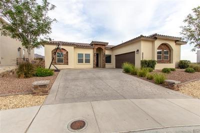 El Paso Single Family Home For Sale: 7238 Kiowa Creek Drive