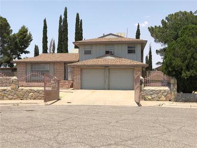 Single Family Home For Sale: 11101 Sea Foam Way