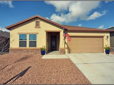 El Paso Single Family Home For Sale: 7441 Red Cedar Drive