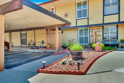 Single Family Home For Sale: 1955 Trawood #13