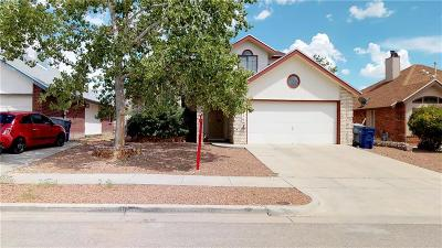 El Paso Single Family Home For Sale: 1016 Desierto Seco Drive