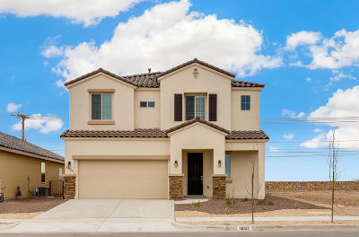 Single Family Home For Sale: 1037 Shields Street