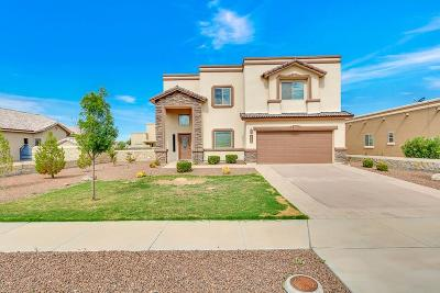 El Paso Single Family Home For Sale: 5717 Valley Laurel Street