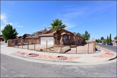 El Paso Single Family Home For Sale: 3453 Bunker Forge Place