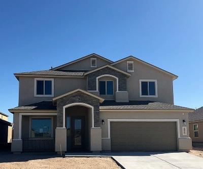 El Paso Single Family Home For Sale: 1496 Honey Mesquite