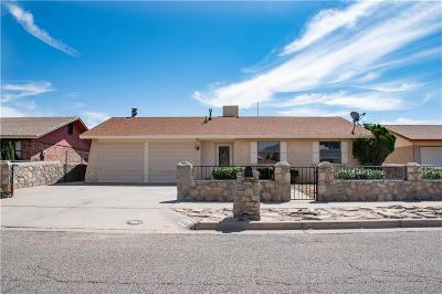 Single Family Home For Sale: 10716 Onyxstone Street