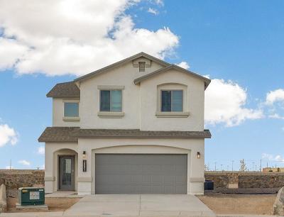 Horizon City Single Family Home For Sale: 13821 Villa Vista Avenue
