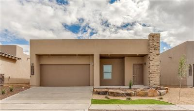 Horizon City Single Family Home For Sale: 13212 Pocklington Road