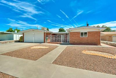 El Paso Single Family Home For Sale: 3210 Drumond Road