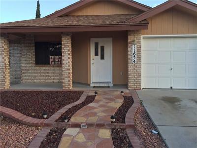 Vista Hills Single Family Home For Sale: 11624 Spencer Drive