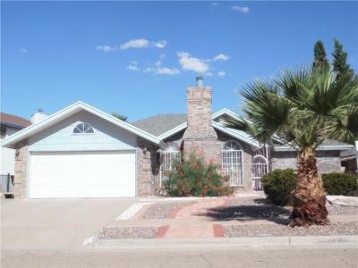 Vista Hills Single Family Home For Sale: 2104 Lake Huron Drive