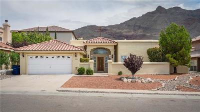 El Paso Single Family Home For Sale: 6008 Los Siglos Drive