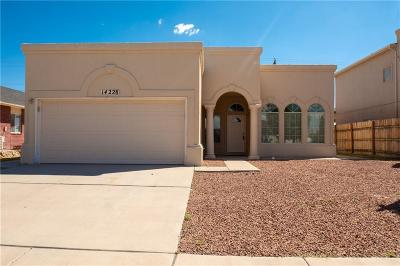 Horizon City Single Family Home For Sale: 14228 Desert Ash Drive