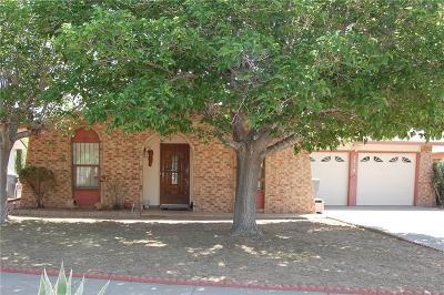 El Paso Single Family Home For Sale: 5316 Plainview Drive