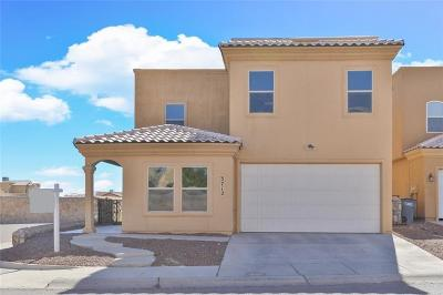 El Paso Single Family Home For Sale: 3712 Coco Palm