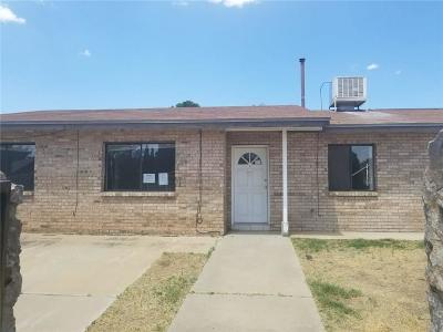 El Paso Single Family Home For Sale: 10841 Aquamarine Street