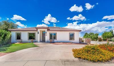 El Paso Single Family Home For Sale: 948 Valle Bello Avenue