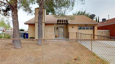 Vista Hills Single Family Home For Sale: 1860 Karl Wyler Drive