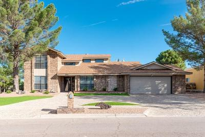 Single Family Home For Sale: 16021 Darley Drive