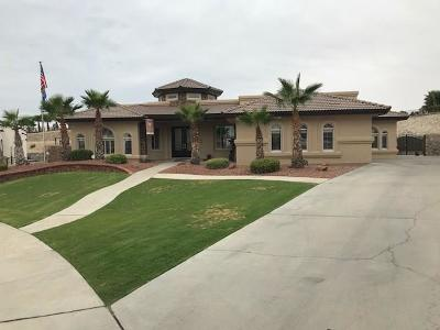 El Paso Single Family Home For Sale: 12263 Bronco Buster Lane