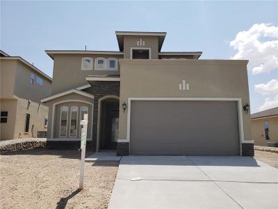 El Paso Single Family Home For Sale: 324 Bellwoode Avenue