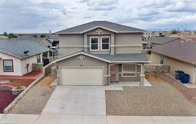 El Paso Single Family Home For Sale: 3277 Perla Point Drive