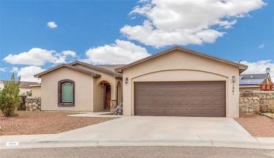 Socorro Single Family Home For Sale: 1041 Callisto Court
