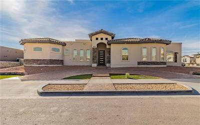 Horizon City Single Family Home For Sale: 833 Angram Place