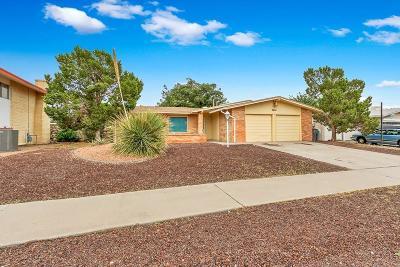 Single Family Home For Sale: 3004 Fierro Drive