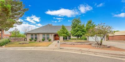 El Paso Single Family Home For Sale: 1205 Cerrito Perdido Lane