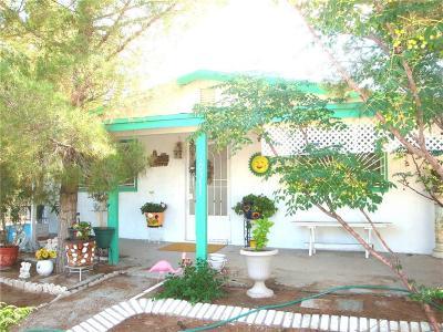 Socorro Single Family Home For Sale: 10371 Potencia Drive