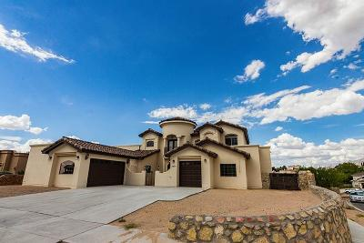 El Paso Single Family Home For Sale: 6697 Desert Canyon Drive