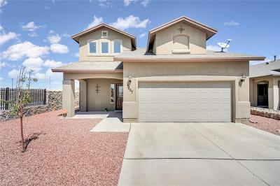 El Paso Single Family Home For Sale: 7657 Red Cedar Drive