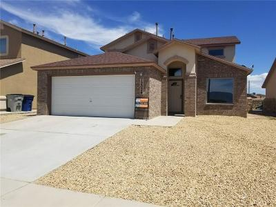 Single Family Home For Sale: 12024 Copper Hill Place